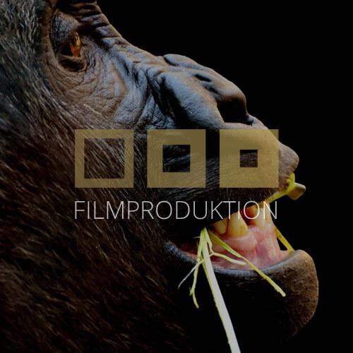 filmagentur